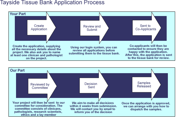 the stages in the tissue biorepository application process